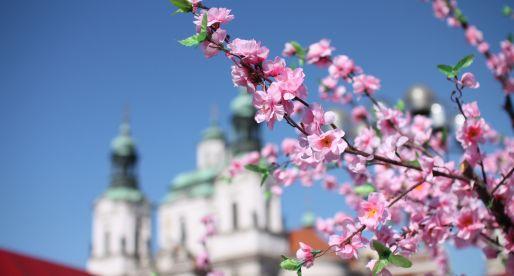 Le tradizioni di Pasqua a Praga (e dintorni).