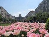 Viaggio a Praga per Pasqua.