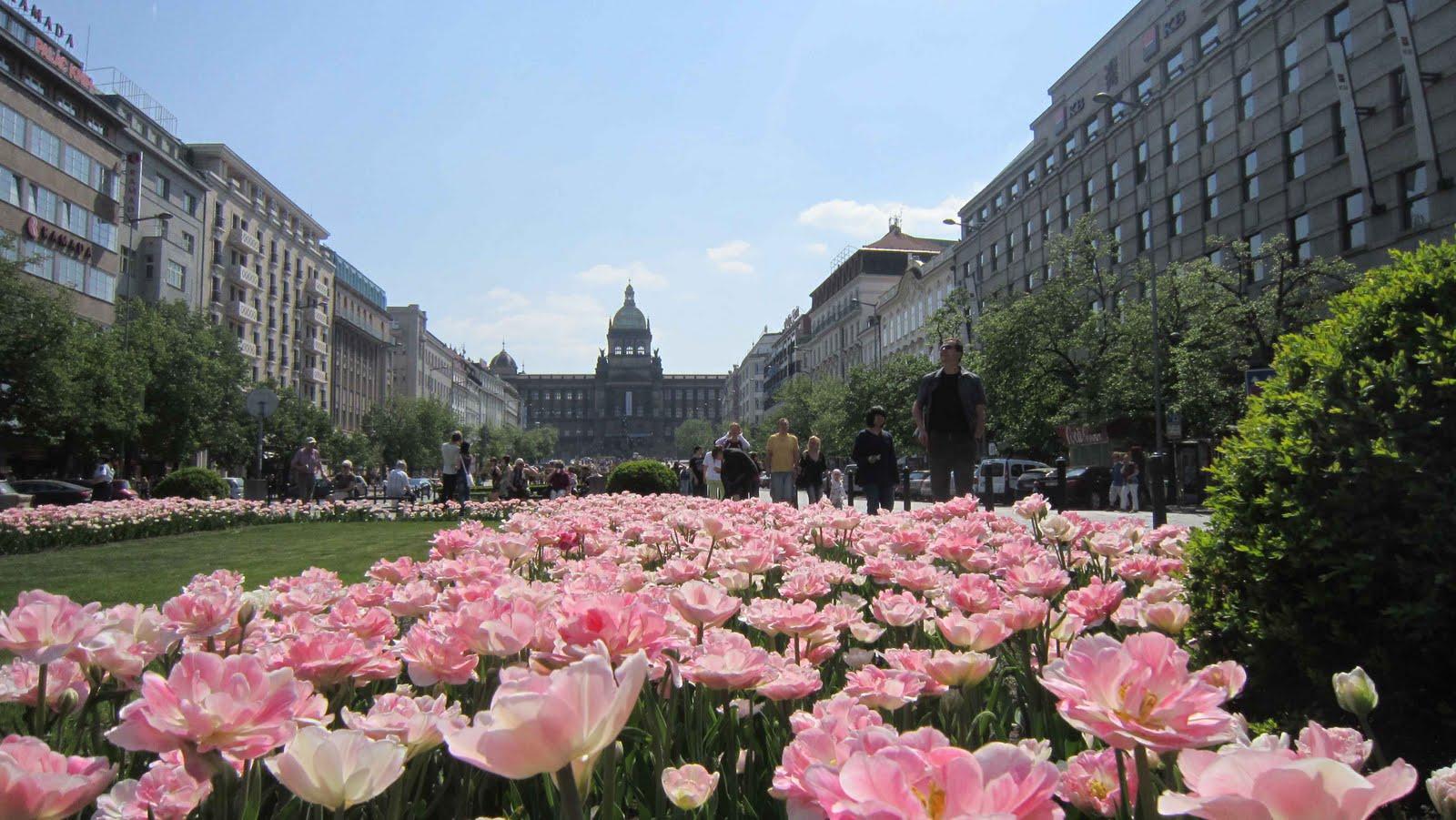 Primavera Prague
