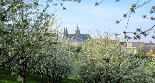 Primo Maggio a Praga tra musei, parchi e birra ceca!