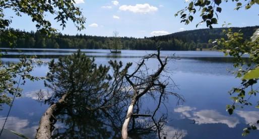 Fuori Praga: passeggiate, natura e vino a Kladska.